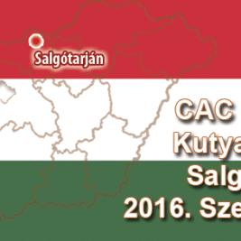 CAC Nemzeti Kutyakiállítás – Salgótarján - 2016. Szeptember 11.