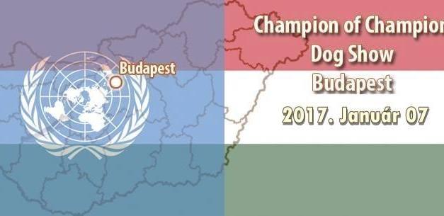 Champion of Champion Show – Budapest – 2017. Január 07.