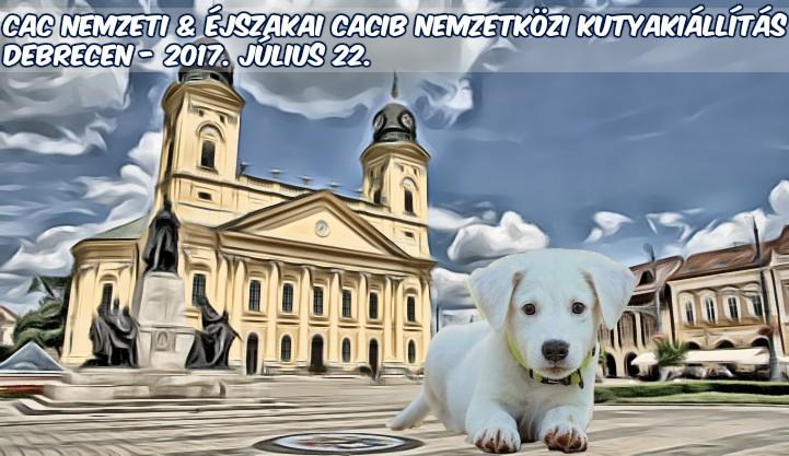 CAC Nemzeti & Éjszakai CACIB Nemzetközi Kutyakiállítás – Debrecen – 2017. Július 22.