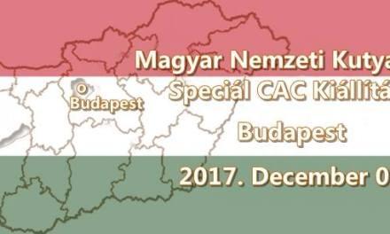 Magyar Nemzeti Kutyafajták Speciál CAC Kiállítása – Budapest – 2017. December 02.