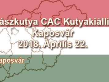 Vadászkutya CAC Kutyakiállítás – Kaposvár - 2018. Április 22.