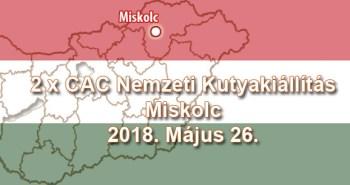 2 x CAC Nemzeti Kutyakiállítás – Miskolc - 2018. Május 26.