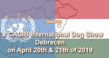 2 x CACIB International Dog Show in Debrecen on April 20th & 21th of 2019