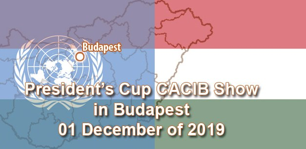 President's Cup CACIB Show in Budapest 01 December of 2019