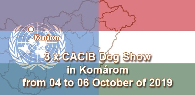 3 x CACIB Dog Show in Komárom from 04 to 06 October of 2019