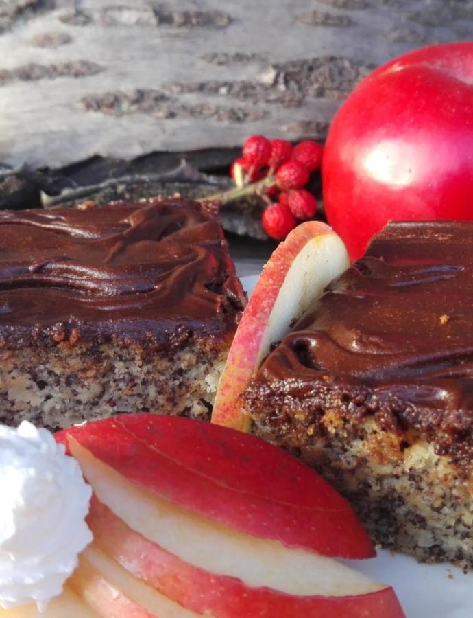 Kolač sa makom i jabukama
