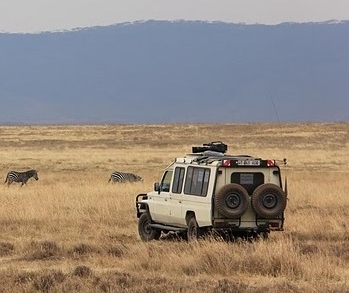 5 Day Tour to Manyara, Serengeti and Ngorongoro