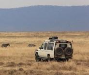 Game drive in Serengeti National Park