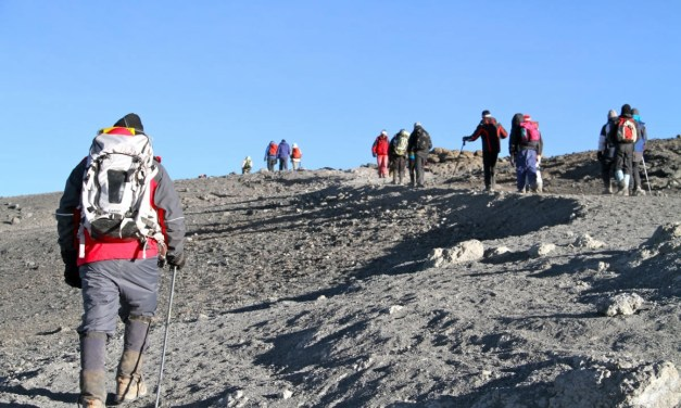 8 Day Kilimanjaro Climbing via Lemosho Route