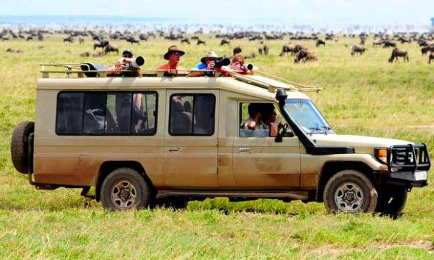 6 Day Luxury Safari to Serengeti and Ngorongoro