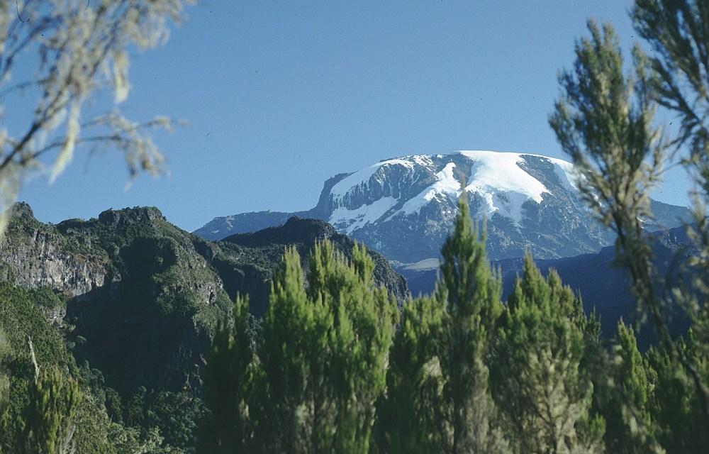 Umbwe Route 6 days Kilimanjaro Trekking
