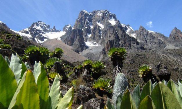 8 Day Mount Kenya Climb – Sirimon Naro Moru Route