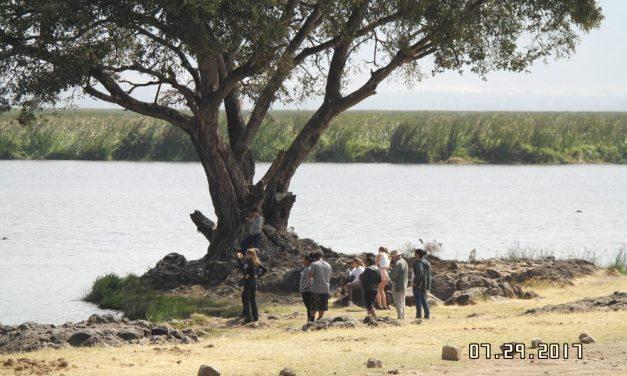 3 Days Safari Serengeti and Ngorongoro