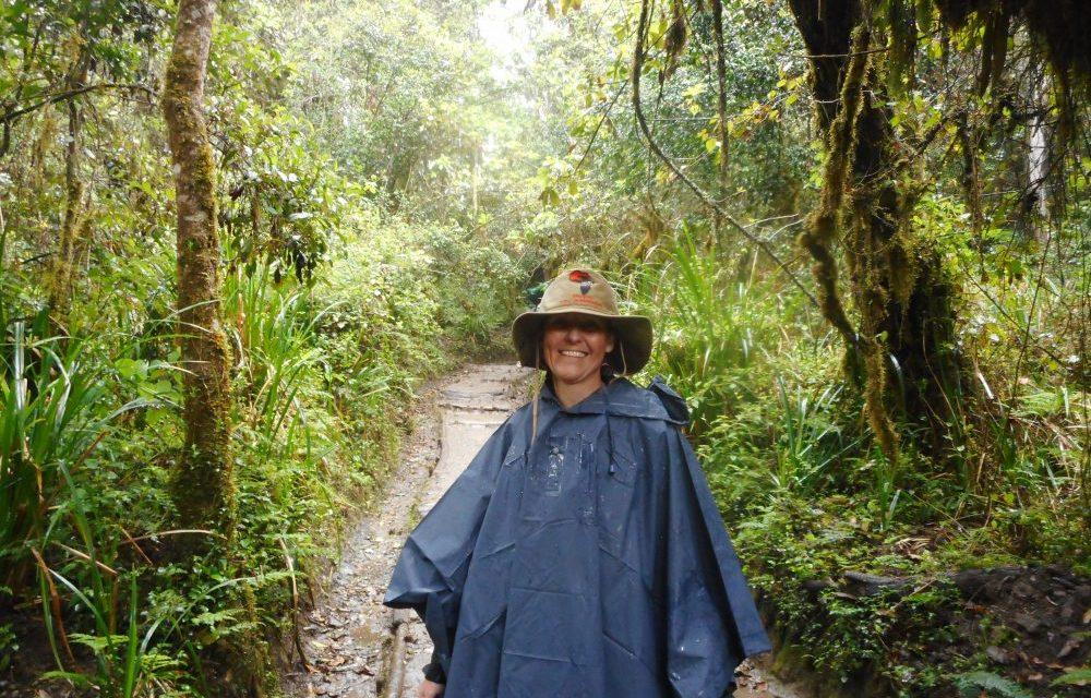 6 Days Kilimanjaro – 3 Days Zanzibar
