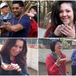 Day Trip To Meserani Snake Park