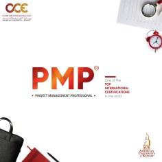 PMP – Project Management Professional