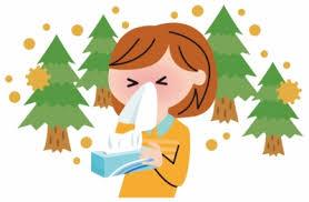 日本の林業と花粉症