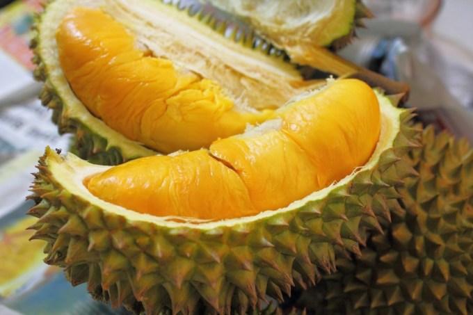 Bahaya Buah Durian Bagi Kesehatan
