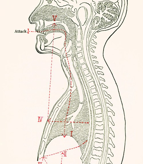 How To Sing: Lilli Lehmann's Illustrated Guide, 1902 | Brain Pickings