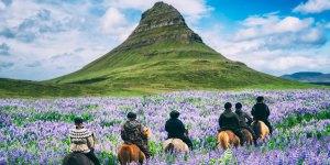 Reykjavik Gezi Rehberi   Yapabileceğiniz 10 Güzel Etkinlik