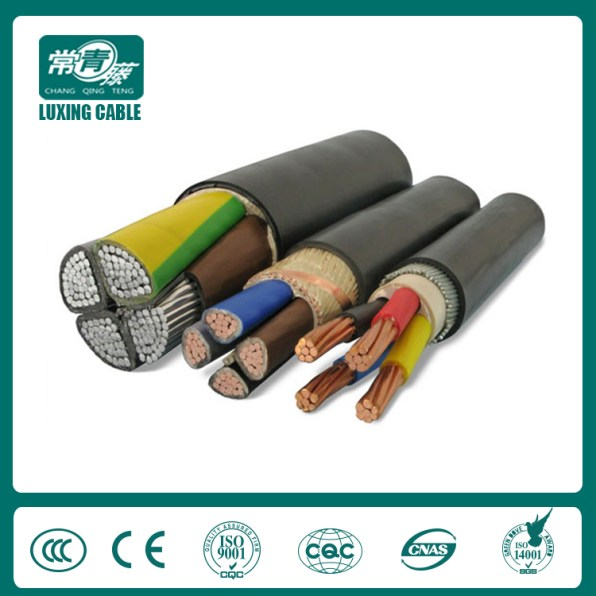 armored cable (6)
