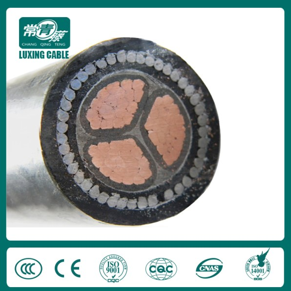 xlpe power cable (23)