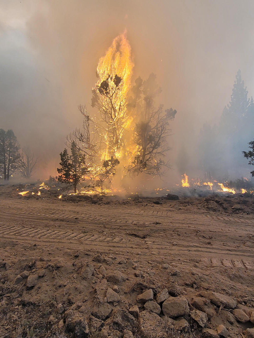 Blue river community total loss eugene weekly. Bootleg Fire Burning In Southern Oregon Grows To 201k Acres Kval