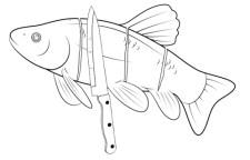 Tekening van vis met insnijdingen overdwars