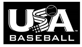 Image result for usa stamp on bats