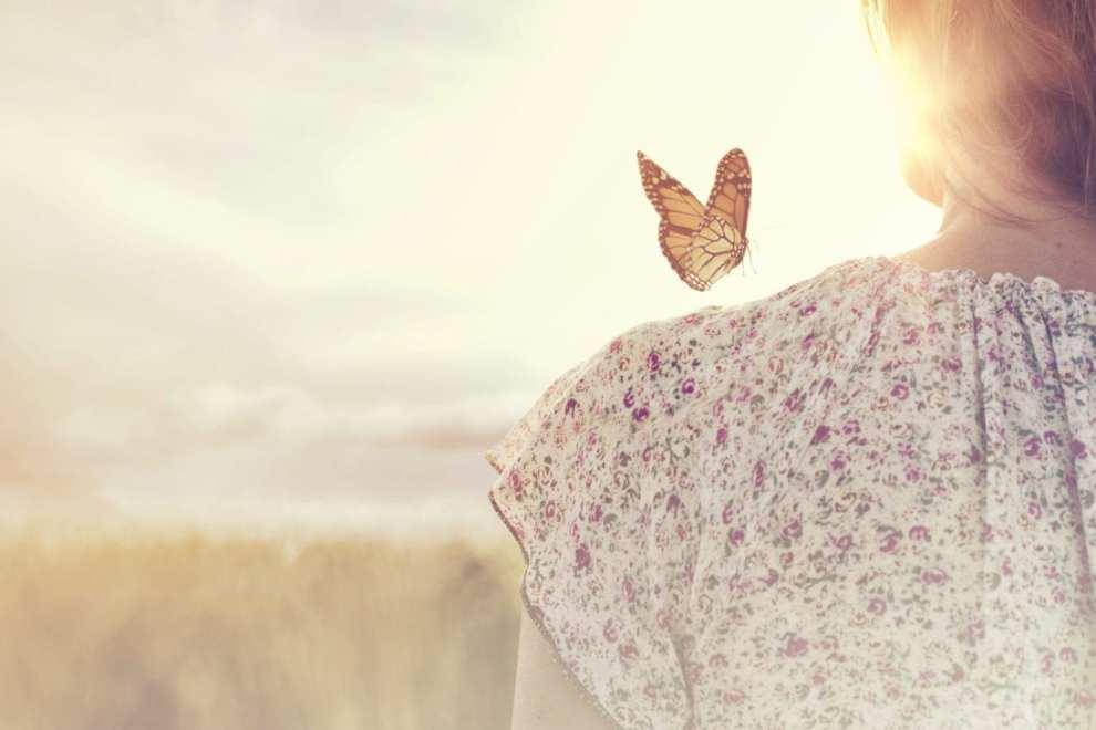 89.5 KVNE East Texas Christian Radio The Beauty of Butterflies Heard On Air Blog Featured Image