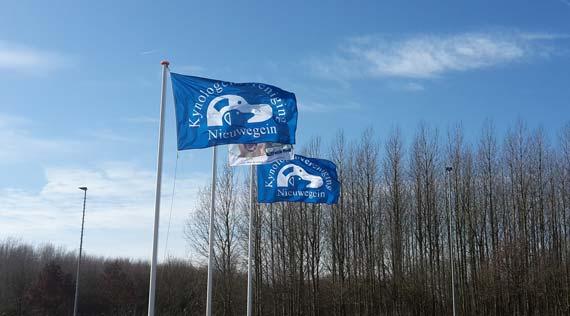 nieuwevlaggen