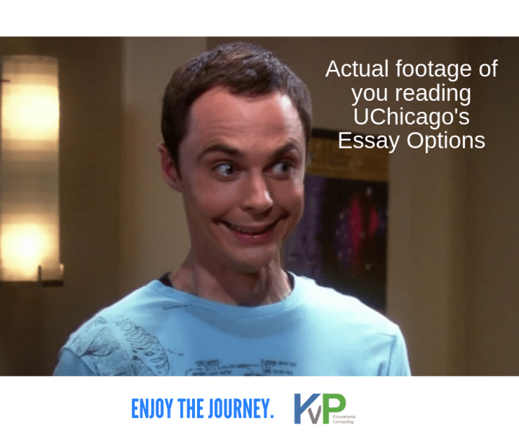 uchicago essay fun in college admissions   kvp educational consulting