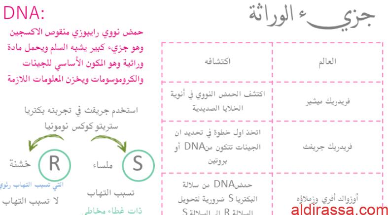 مذكرة أحياء للصف الثاني عشر العلمي الفصل الدراسي الثاني
