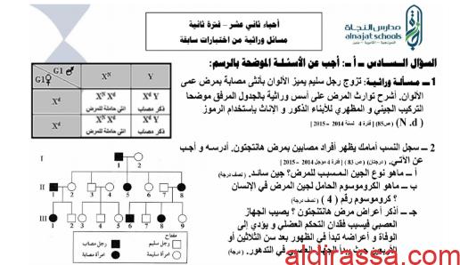 مسائل الوراثة للصف الثاني عشر العلمي الفصل الثاني