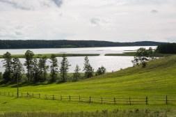 Jezioro Wigry ze wzgórza
