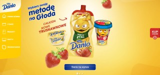 Danio Com Pl Main Page Screenshot
