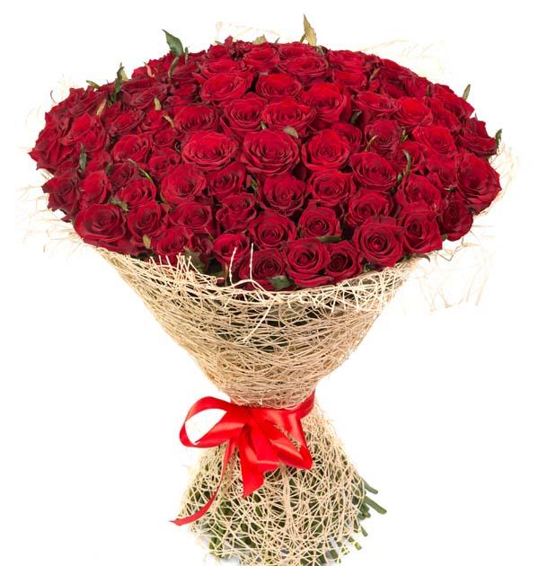 duży bukiet czerwonych róż 100