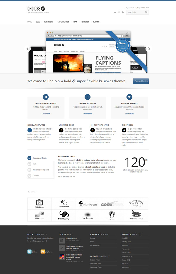 choices Best 30 WordPress Themes of June 2012