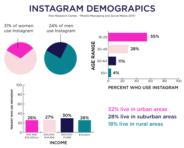 Instagram Demographics // What Social Media Platform Does Your Target Market Use? // Katie Williamsen Web & Social Media, LLC
