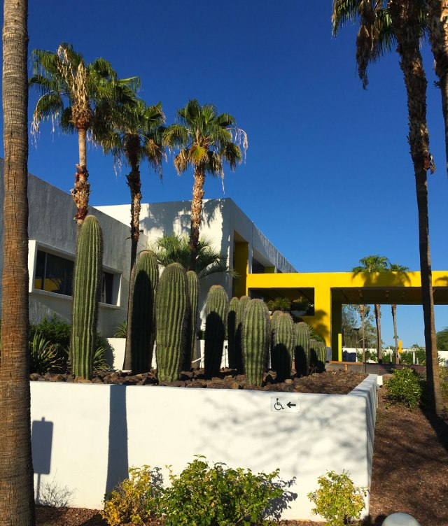 The Saguaro, Phoenix AZ - The Savvy Experience