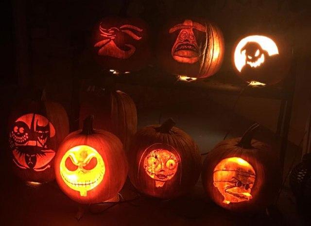 Social Media Mavens: Meghan of Meghan Maydel // Meghan's pumpkins