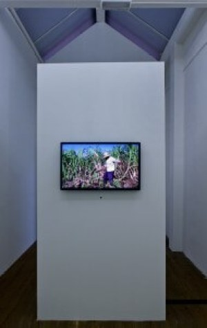Adrian Melis, Productivity Control System for the Last Cane Cutter, 2015, installation view