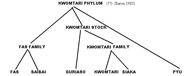 Kwomtari Phylum and the Fas language