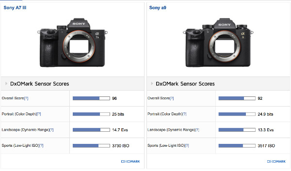 https://www.dxomark.com/Cameras/Compare/Side-by-side/Sony-A7-III-versus-Sony-a9___1236_1162