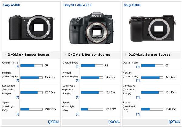 ony A5100 versus Sony SLT Alpha 77 II versus Sony A6000:
