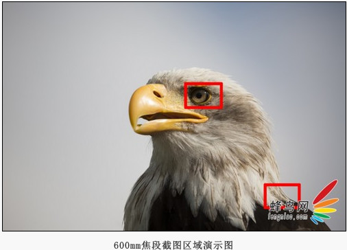 http://qicai.fengniao.com/479/4793567_all.html#p4793567