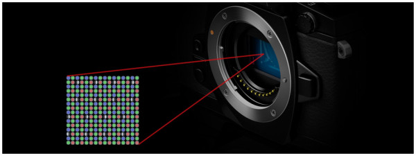 DUAL FAST AF/高速性能|ミラーレス一眼カメラ OLYMPUS OM-D E-M1|オリンパス