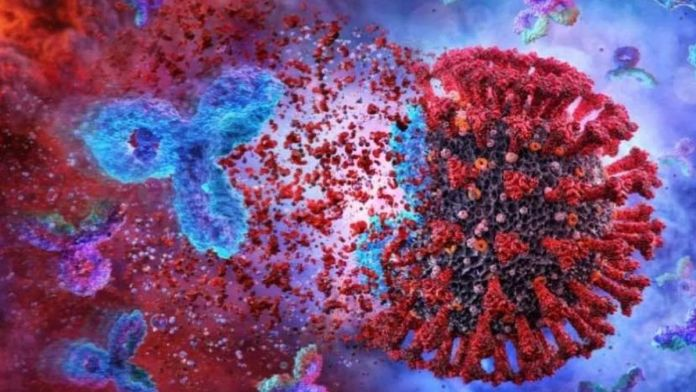 Study : Covid19 antibodies last for at least 9 months after infection