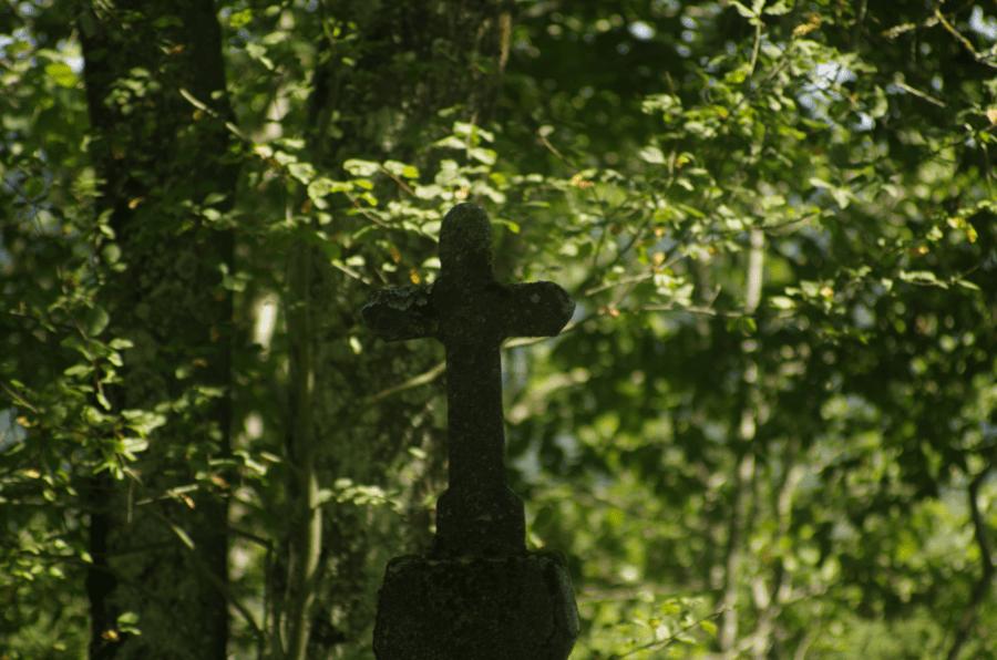 Bieszczadzkie cmentarze - zatopione w zieleni