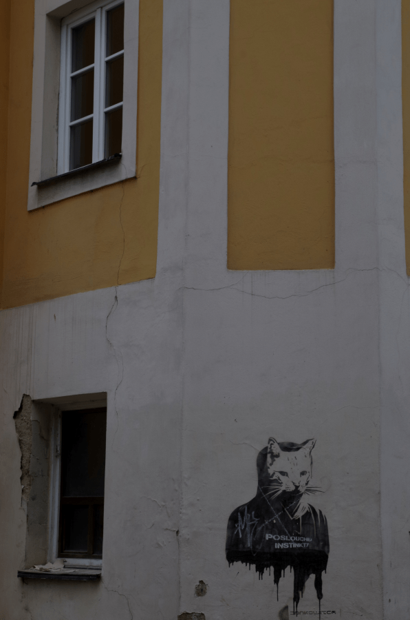 Hradec Králové - Czechy - koci mural